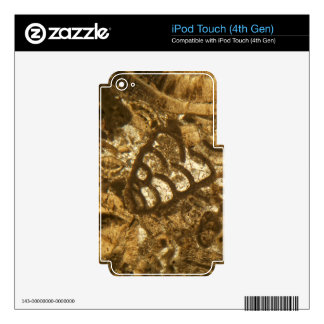 Miocene limestone under the microscope iPod touch 4G decals