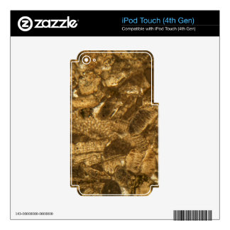 Miocene limestone under the microscope iPod touch 4G skins
