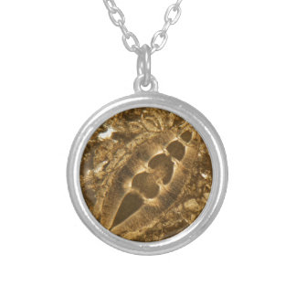 Miocene limestone under the microscope silver plated necklace