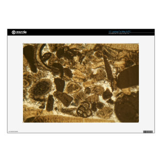 Miocene limestone under the microscope skins for laptops