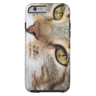 Mira en los ojos yo… funda para iPhone 6 tough