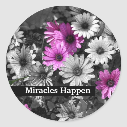 Miracles Happen Daisies Inspirational Sticker