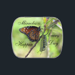 """Miracles Happen - Jelly Bean Tin<br><div class=""""desc"""">I designed this tin for someone I love very dearly who is currently battling cancer. The doctors have one opinion - I have Faith. Miracles Happen Every Day - you just have to look for them. I believe God gave us the caterpillar and the butterfly as a daily reminder of...</div>"""