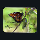 "Miracles Happen Magnet<br><div class=""desc"">Butterflies have always been a sign of miracles to me... ... ...  so this photo is especially special ...  both the caterpillar and the butterfly together.</div>"