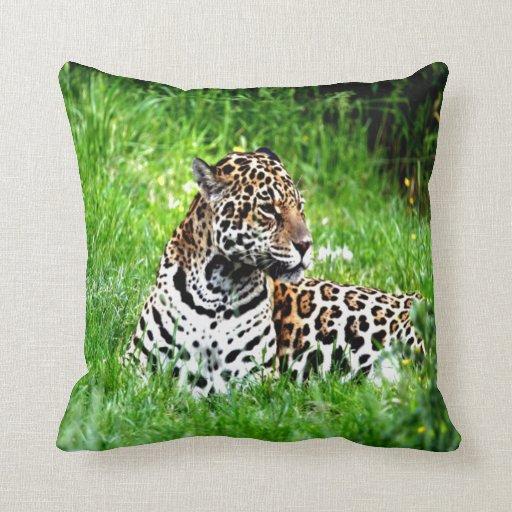 Mirada de Jaguar adelante al amor Almohadas