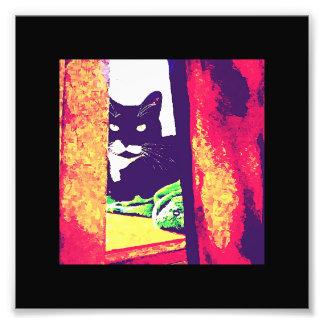Mirada de la pintura de Lucy Fotografías