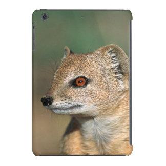 Mirada de Suricate Suricata Suricatta Funda De iPad Mini