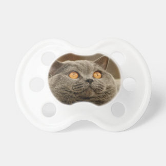 mirada del gato en el estimado amor suavemente chupetes para bebes