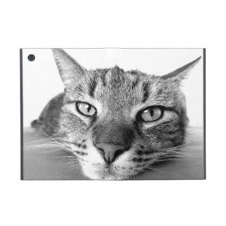 Mirada del gato iPad mini fundas