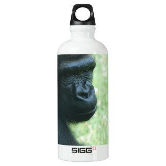 Mirada del gorila