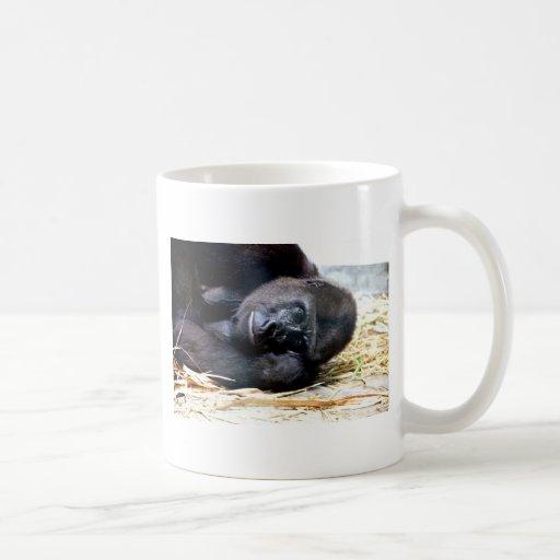 Mirada del gorila taza básica blanca