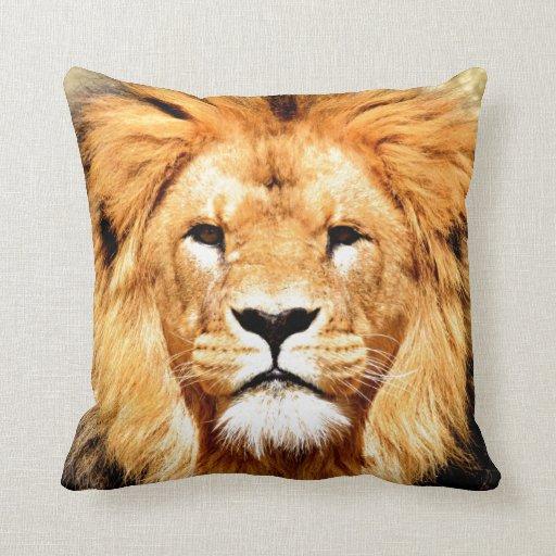 Mirada del león adelante al amor cojines