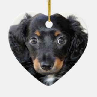 Mirada del perrito del Dachshund adelante al amor Ornaments Para Arbol De Navidad