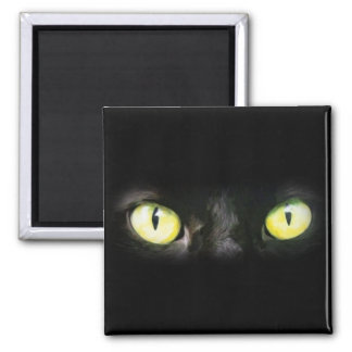 Mirada fija de los ojos de gato del negro y del a iman de frigorífico