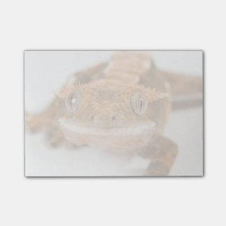 Mirada fija del Gecko Post-it Notas