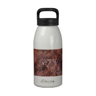Mirada fija del guepardo botella de agua reutilizable