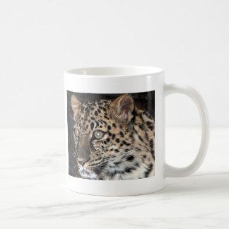 Mirada fija del leopardo taza de café