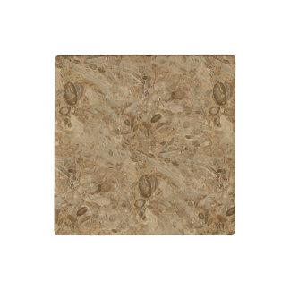 Mirada fósil de mármol de Brown Imán De Piedra