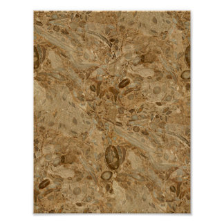 Mirada fósil de mármol de Brown Póster