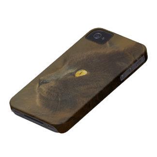 Mirada hacia fuera Case-Mate iPhone 4 cárcasas