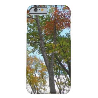 Mirada para arriba a bajar follaje de otoño funda barely there iPhone 6