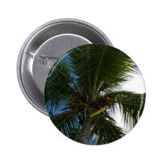Mirada para arriba al botón de la palma de coco pin redondo de 2 pulgadas