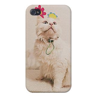 mirada para arriba del caso de Iphone del gatito iPhone 4/4S Funda