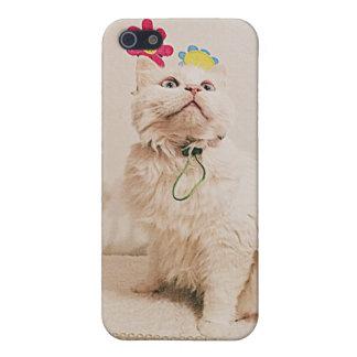 mirada para arriba del caso de Iphone del gatito iPhone 5 Fundas