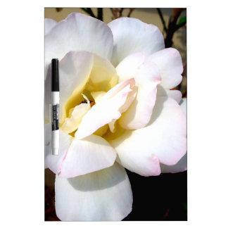 Mirada suave del vintage romántico del rosa blanco tablero blanco