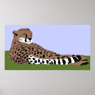 mirada y abajo poster del guepardo