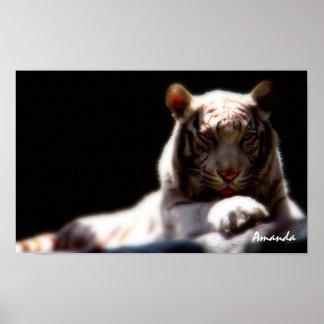 Mirage White Tiger Art Poster