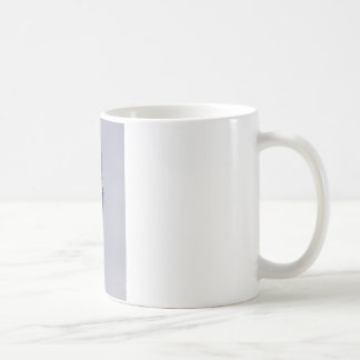 MIRAMAR AFTERBURNERS COFFEE MUG