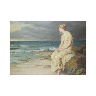 Miranda del mar impresión en lienzo estirada