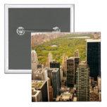 Mirando hacia fuera el Central Park desde arriba,  Pin