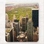 Mirando hacia fuera el Central Park desde arriba,  Alfombrilla De Raton