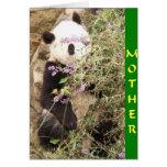 Mirar a escondidas a la madre de la panda felicitacion