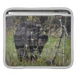Mirar a escondidas el oso; Calendario 2013 Fundas Para iPads