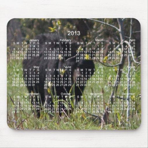 Mirar a escondidas el oso; Calendario 2013 Tapete De Ratón