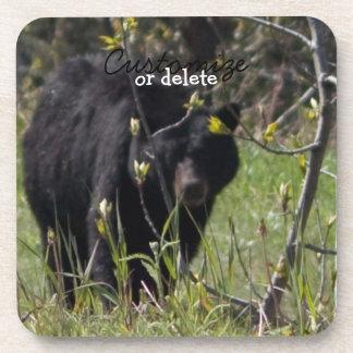 Mirar a escondidas el oso; Personalizable Posavaso