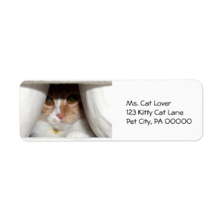 Mirar a escondidas etiquetas del remite del gatito etiqueta de remitente