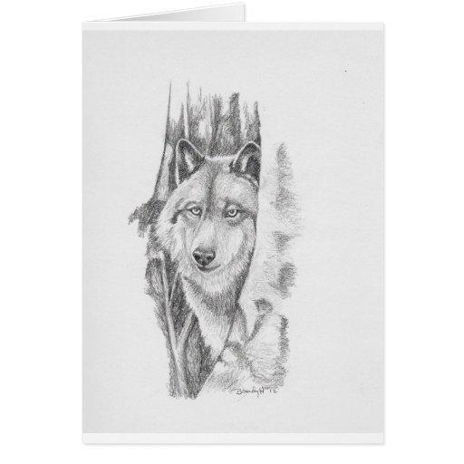 Mirar a escondidas Wolf.jpg Tarjeton