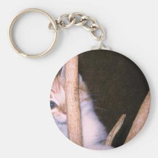 mire a escondidas un gatito del abucheo llavero redondo tipo pin