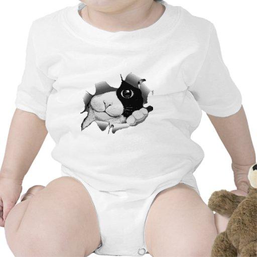 Mire a escondidas un gatito del abucheo traje de bebé