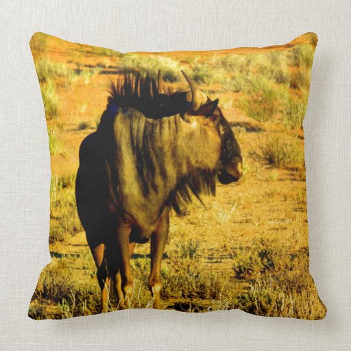 Mire adelante a mi antílope azul del wildebeest de cojines