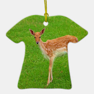 Mire adelante al animal de los ciervos del cervati adorno para reyes