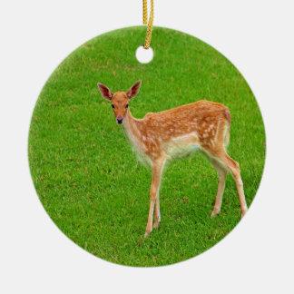Mire adelante al animal de los ciervos del cervati ornamento para reyes magos