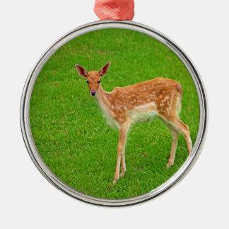Mire adelante al animal de los ciervos del cervati ornamentos de navidad