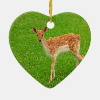 Mire adelante al animal de los ciervos del cervati adorno de navidad