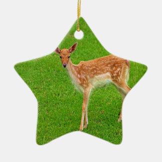 Mire adelante al animal de los ciervos del cervati ornamentos de reyes magos