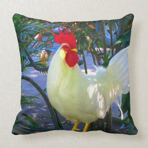 Mire adelante para amar el pollo almohada